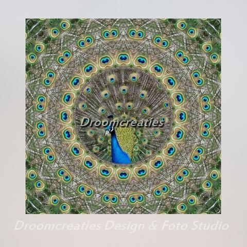 mandala_design_peacock